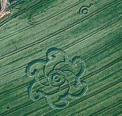 Photographie de Crop Circle.