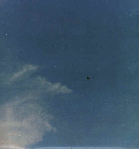 A Well Known Mexican Banker His Wife Children And Their Maid Saw A Strange Balloon Approaching Rapidly From The East In A Clear Afternoon Sky